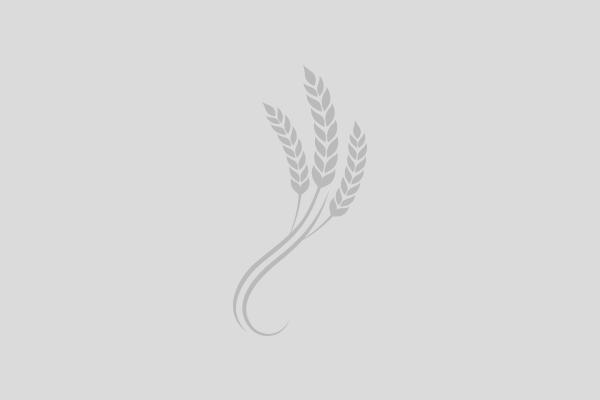 al-sesia-menu